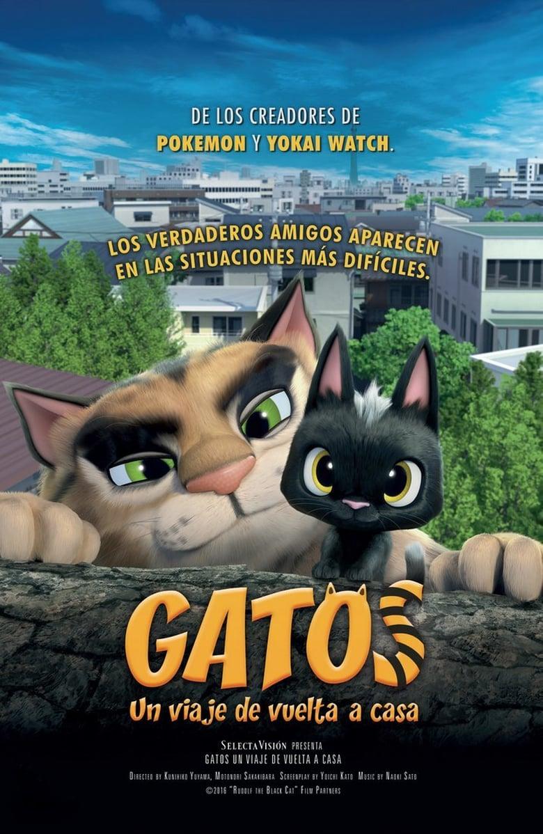 Poster-gatos-un-viaje-de-vuelta-a-casa